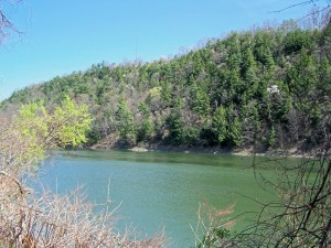 The Chemung River just west of Elmira, NY (photo by G. Chorpenning)