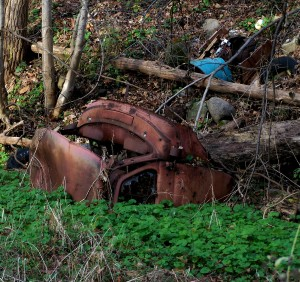 Part of a Wrecked Car along the Outlet Trail between Keuka and Seneca Lakes