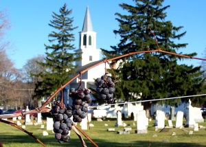 Vineyard and Church, Hector, NY; photo by GAC