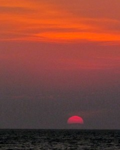 Magenta on the Horizon; photo by GAC