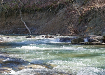 Kings Creek in Weirton, WV